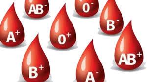 a kan grubuna göre beslenme