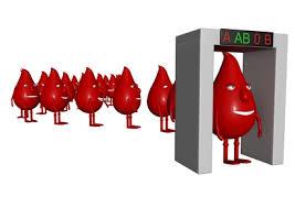 ab kan grubu