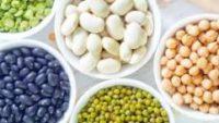 Gıdalardaki Antinutrientleri Azaltarak, Besin Emilimini Artırma