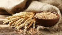 Buğdayın Besin Değeri ve Sağlık Etkileri