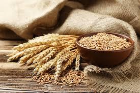 buğday yararları