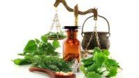 Doğanın Şifa Mucizesi-Doğal Antibiyotikler-
