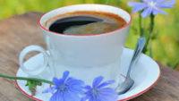 Hindiba Kahvesi Nedir, Faydaları Nelerdir?