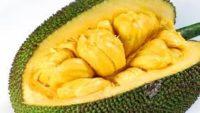 Jackfruit Nedir, Nasıl Yenir, Faydaları Nelerdir?