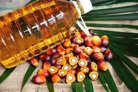 palm yağı olan yiyecekler