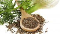 Zayıflatan Bitki Çayları ve Tarifleri