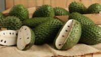 Tarçın Elması (Graviola) Sağlık Faydaları ve Kullanımı