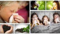 Yeşil Çay İçmenin Sağlık ve Güzellik Faydaları