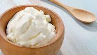 Yoğurdun Kalorisi ve Besin Değeri