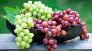 resveratrol içeren besinler