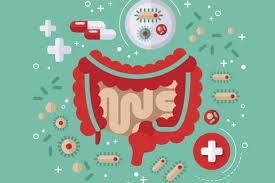 geçirgen bağırsak bitkisel tedavi