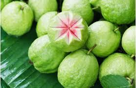 guava zararları