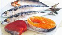 Yağlı Balıkların Faydaları