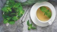 Nane Çayının Faydaları ve Tarifi