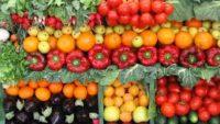 Nişastalı ve Nişastasız Sebzeler: Faydaları ve Besin Değerleri
