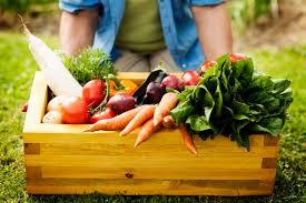 kolesterol diyetinin olumsuz yanları