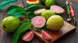 guava nedir