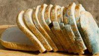 Küflenmiş Ekmek Yenir mi?