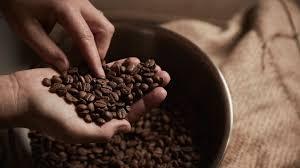 kahve çekirdeği ile zayıflama