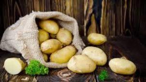Patates Diyeti ile Nasıl Hızlı Kilo Verilir?