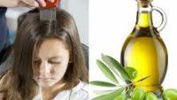 Bit için Zeytinyağı Nasıl Kullanılır?