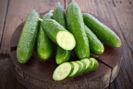 salatalık diyeti nedir