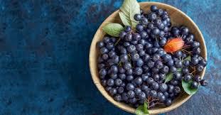 aronia meyvesi faydaları