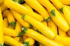 sarı kabak çeşidi