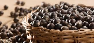 acai üzümü besin değeri