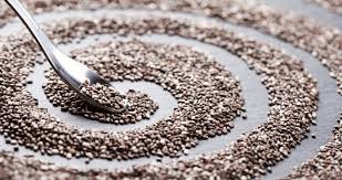 organik chia tohumu