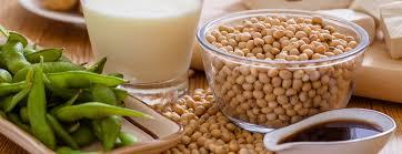 soya fasulyesinin zararları