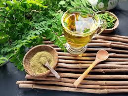 moringa çayı kullanımı