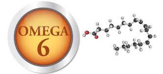 omega 6 ne işe yarar