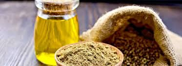 kenevir tohumu yağı faydaları