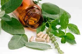 menopozda kullanılan bitkiler