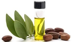 jojoba yağı besin değeri